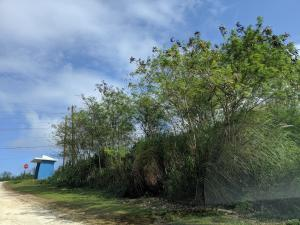 Route 4A & Chalan Mapao, Talofofo, GU 96915
