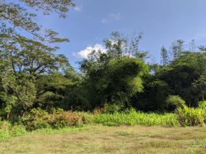 Chalan Mannga, Ordot-Chalan Pago, GU 96910