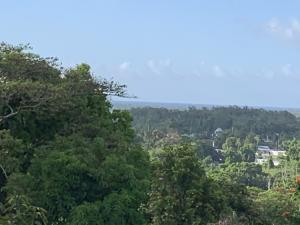 Pale Duenas Lagu Street 115, Santa Rita, Guam 96915