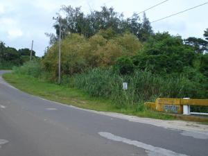 RT 17, Santa Rita, Santa Rita, GU 96915
