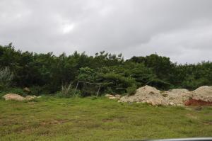 Rt after Tun Juan Delores St, Yigo, GU 96929