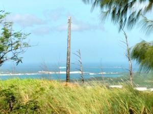 Just of Cross Island Road, Santa Rita, GU 96915