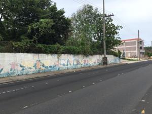 Army Drive - Route 16 & Hegao Loop, Dededo, GU 96929