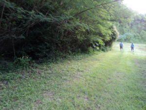 Route 4, Talofofo, GU 96915