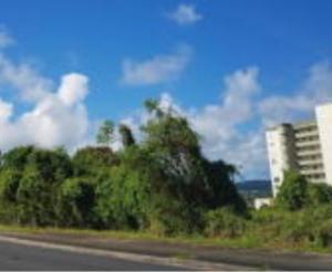 Carlos Camacho Road, Tamuning, GU 96913