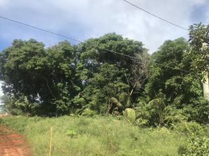 Chalan Manuel Ana, Yigo, GU 96929