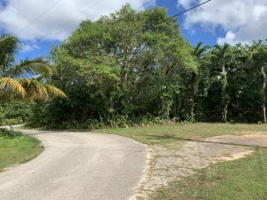 Photo of access road (coral) to the property