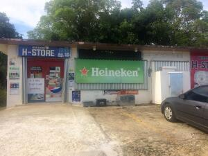 H-Store