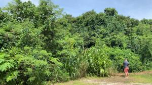 Chalan Juanan Dunca, Yigo, GU 96929