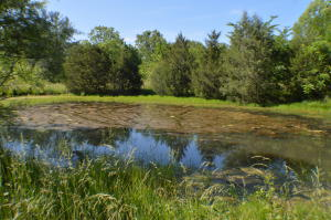 Front pond.