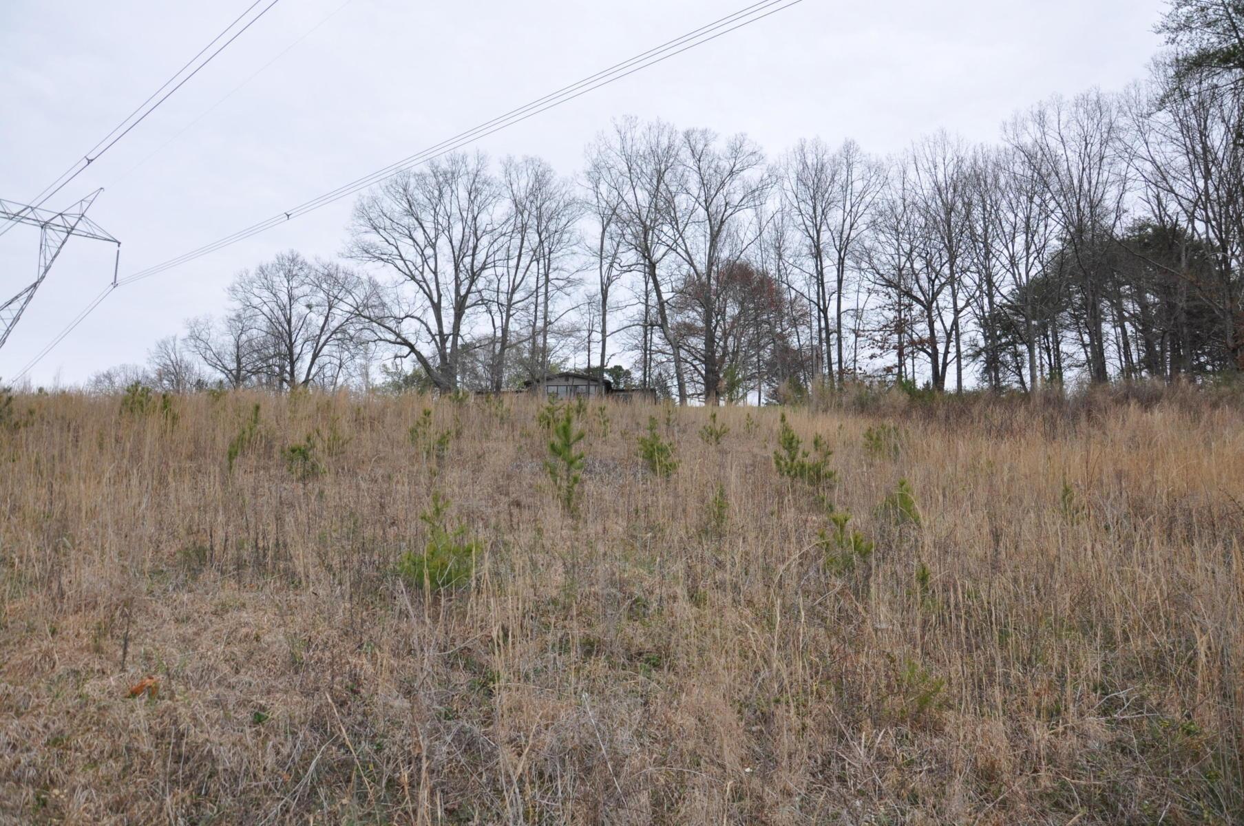 1205 Sequoyah Access