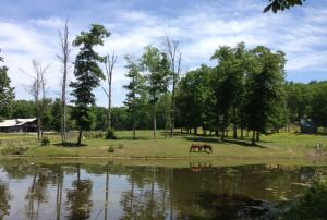 23 acres of pastures and ponds.