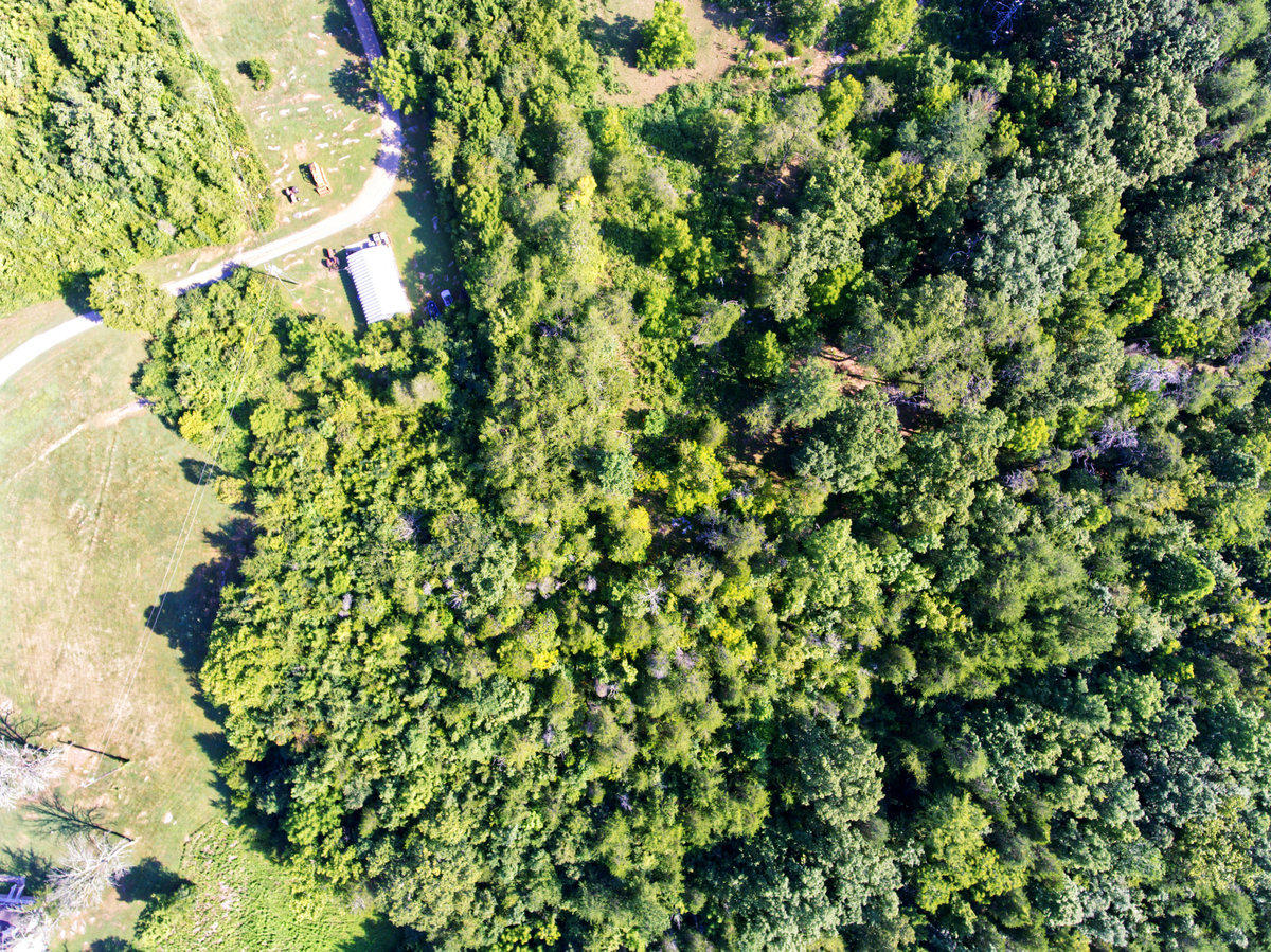 Image 6 For 9710 Thorn Grove