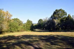 481 Mccustion Cemetery Rd, Spring City, TN 37381