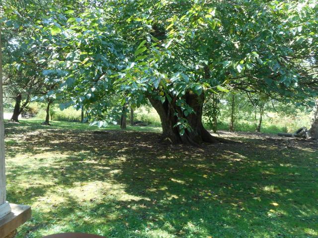 Image 5 For 27 Boynton