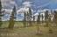10 CORD5171B/SHOTGUN Road, Fraser, CO 80442