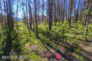 493 Looking Glass (CR 850), Fraser, CO 80442