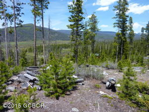 389 GCR 4632, Grand Lake, CO 80447