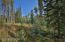 225 Lake Trail, Winter Park, CO 80482
