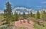 1379 GCR 85/Elk Horn Drive, Tabernash, CO 80478