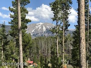 67 Mad Moose Lane, Grand Lake, CO 80447