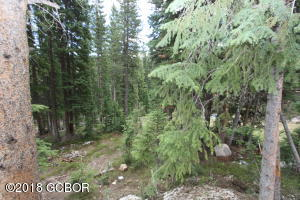210 BRIDGER TRAIL, Winter Park, CO 80482