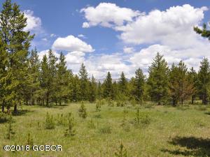 1104 Moose Run Ln aka GCR 5002, Fraser, CO 80442