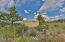 421 West Meadow Mile, 6, Fraser, CO 80442