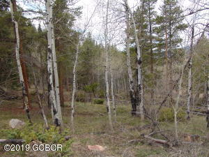 574 GCR 899 Overlook Drive, Granby, CO 80446