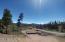 230 GCR 4 DIGOR DR, Grand Lake, CO 80447