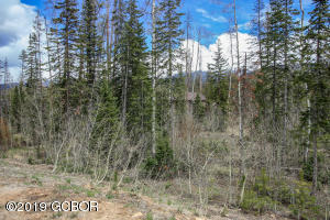 714 LELAND CREEK, Winter Park, CO 80482