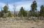 TBD, Hot Sulphur Springs, CO 80451