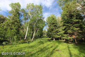 Routt County Road 2, McCoy, CO 80463