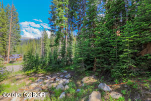 197 Bridger Trail, Winter Park, CO 80482