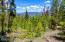 212 GCR 6424, Grand Lake, CO 80447