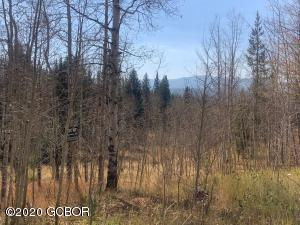 2060 PIONEER Trail, Fraser, CO 80442