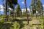 2570 GCR 511/Golf Course Circle, Tabernash, CO 80478