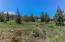 2.35 Acre Second Homesite