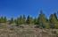 809 GCR 632 aka Chief Trail, Granby, CO 80446