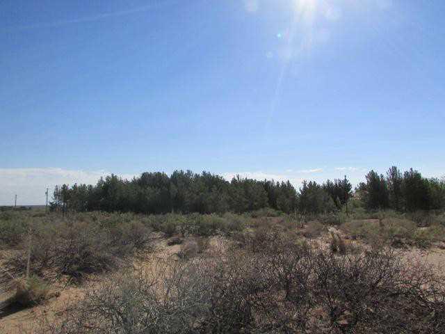 2751 QUITMAN, Chaparral, New Mexico 88081, ,Land,For sale,QUITMAN,587785