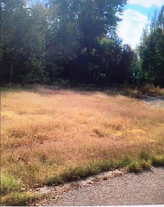 4819 Vista Del Monte-A Street, El Paso, Texas 79922, ,Land,For sale,Vista Del Monte-A,801200