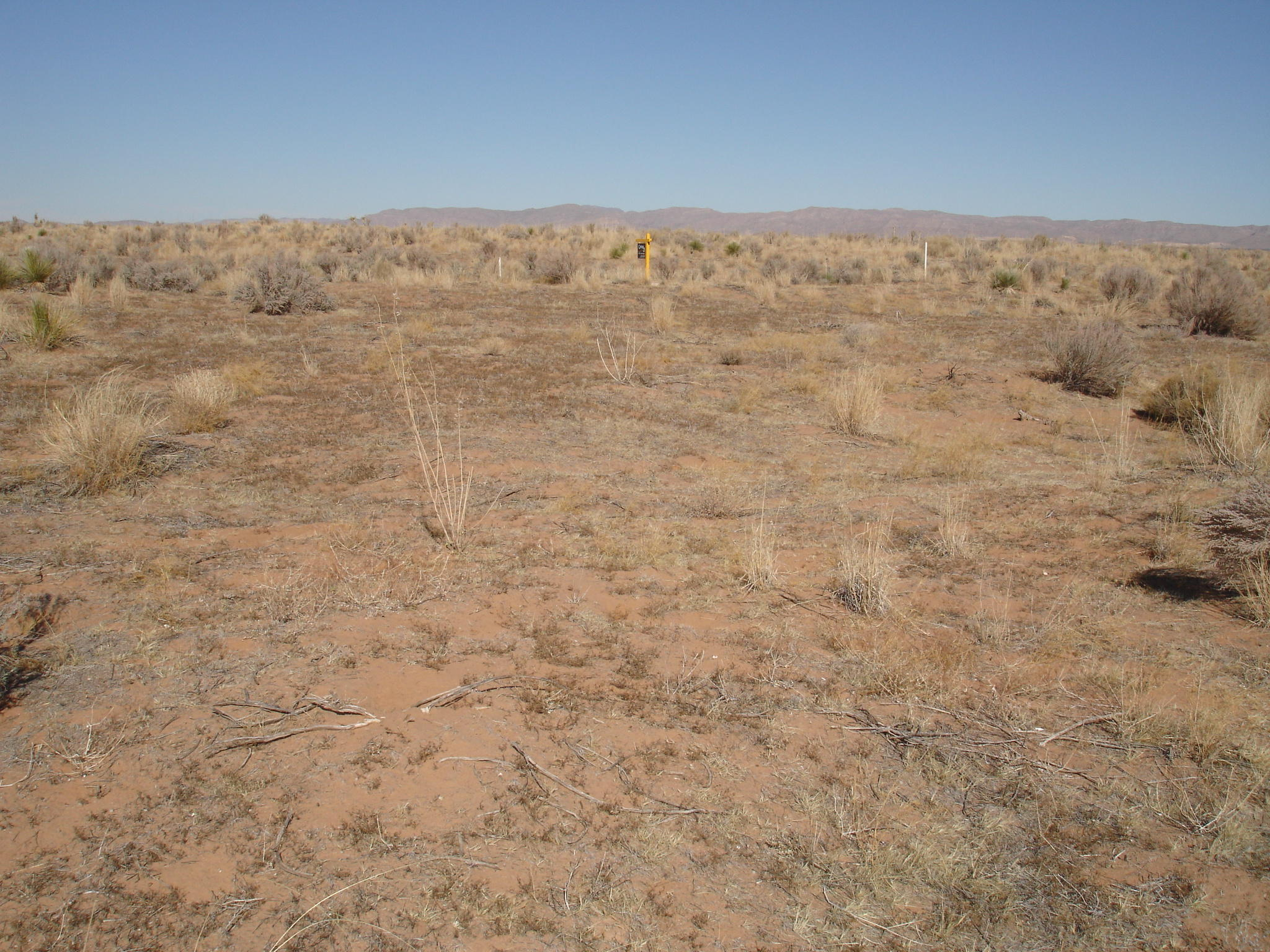 0 State Highway 1111, Sierra Blanca, Texas 79851, ,Land,For sale,State Highway 1111,807284
