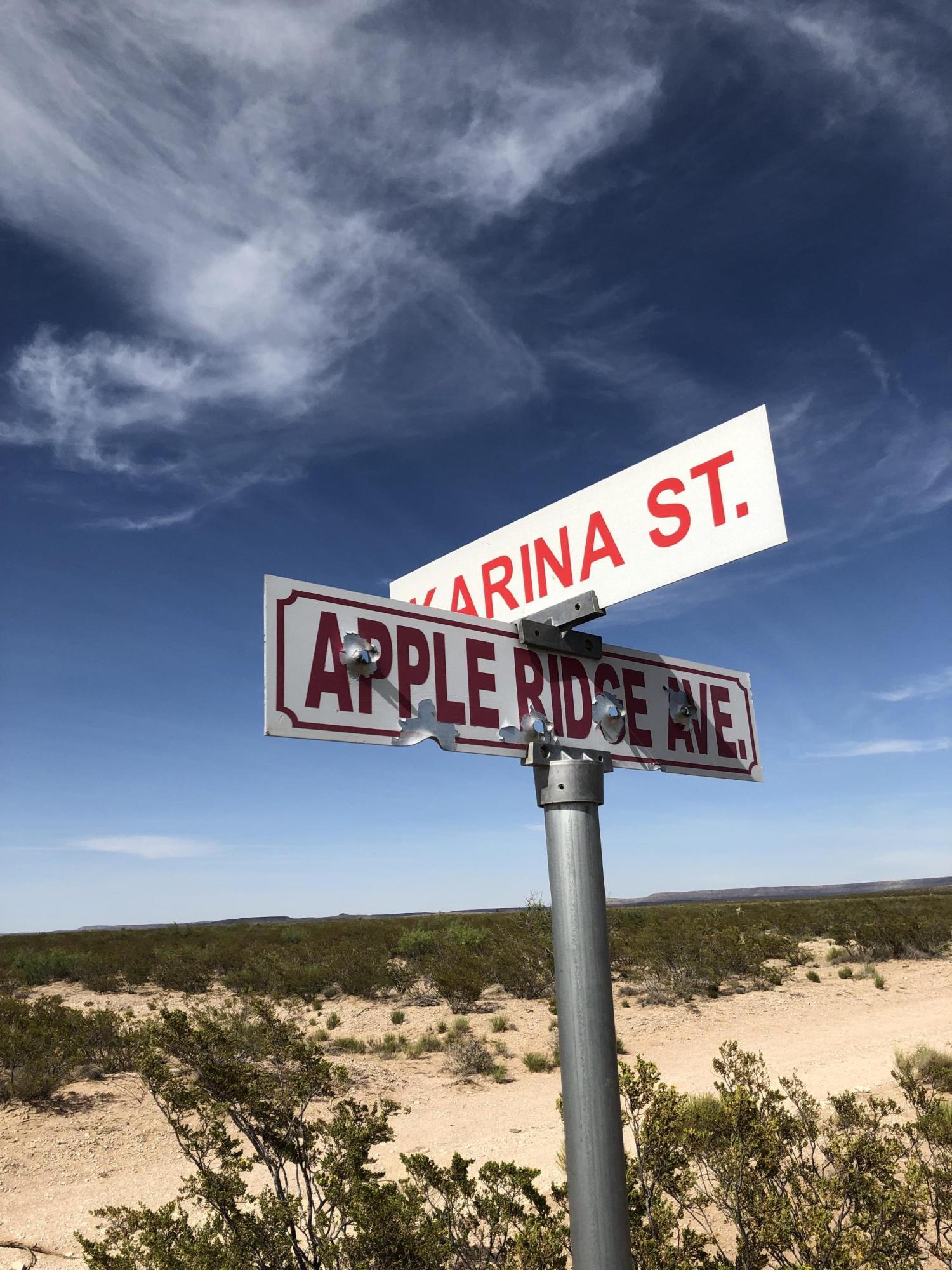 0 Karina Street, Ft Hancock, Texas 79839, ,Land,For sale,Karina,807555