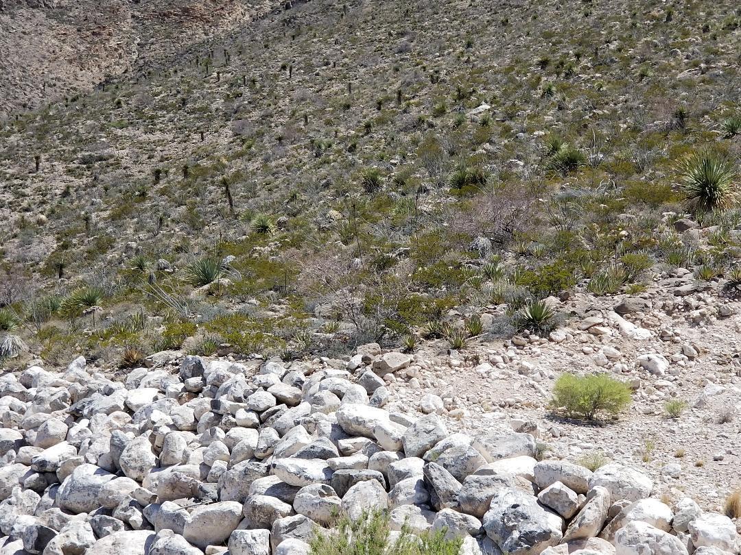 472 ROCKY POINTE Drive, El Paso, Texas 79912, ,Land,For sale,ROCKY POINTE,808530