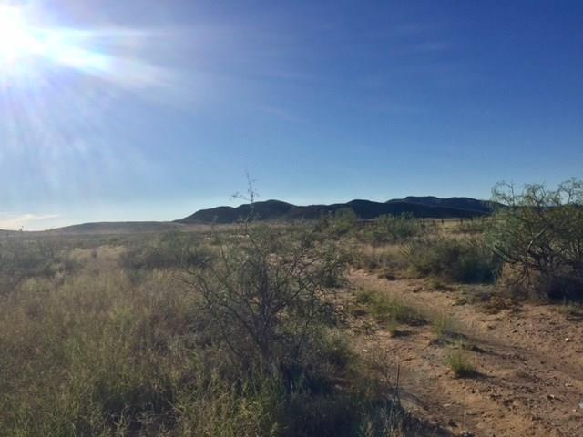 17560 CURLEY AVE Avenue, El Paso, Texas 79938, ,Land,For sale,CURLEY AVE,809541