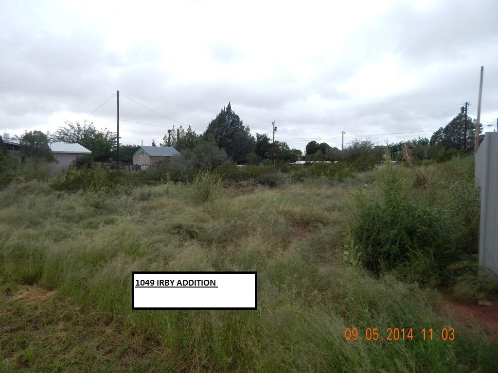 1049 PARCEL # 49 IRBY ADDITION Street, Van Horn, Texas 79855, ,Land,For sale,PARCEL # 49 IRBY ADDITION,810612