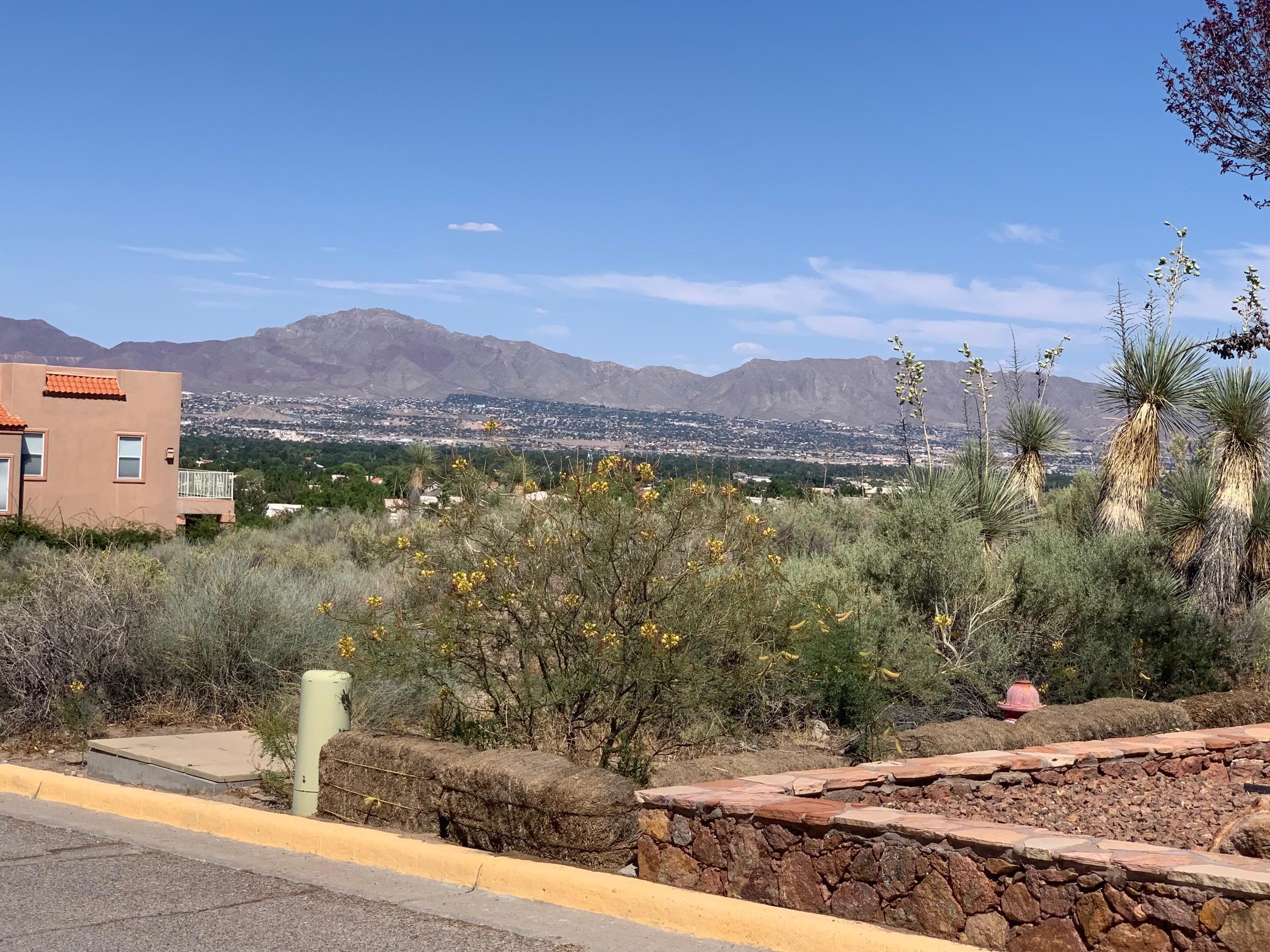 41 Trevino Road, Santa Teresa, New Mexico 88008, ,Land,For sale,Trevino,811753