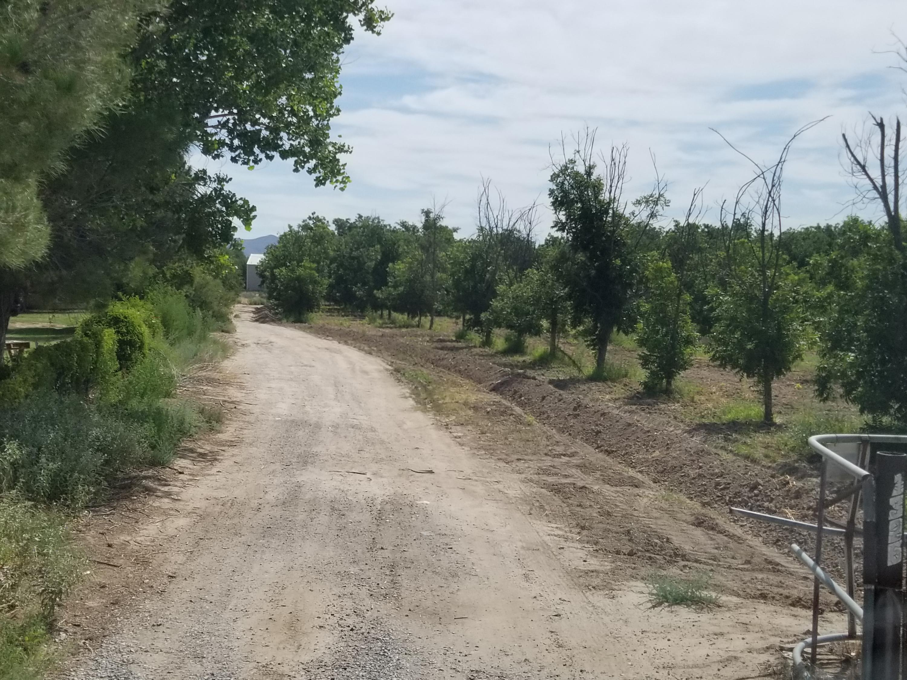 1326 WATERFRONT Street, Anthony, New Mexico 88021, ,Land,For sale,WATERFRONT,813789