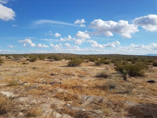 1 Coosa, Horizon City, Texas 79928, ,Land,For sale,Coosa,819666
