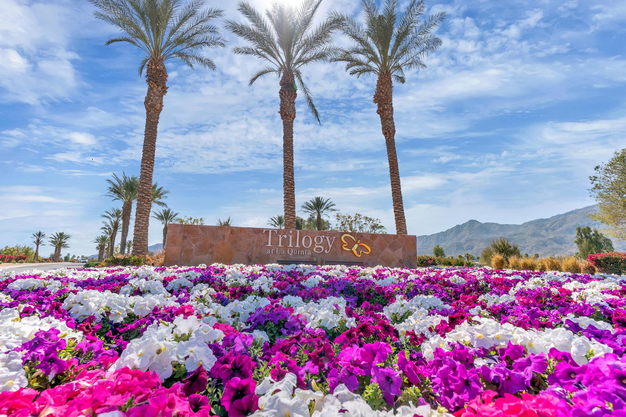 Photo of 81454 Rustic Canyon Drive, La Quinta, CA 92253